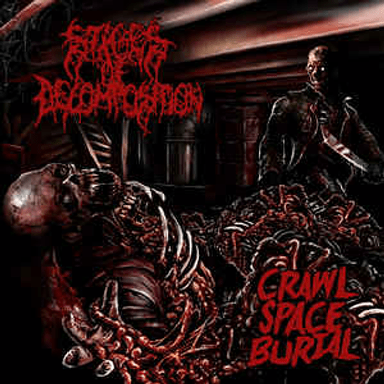 Stages Of Decomposition – Crawl Space Burial MCD,Dig