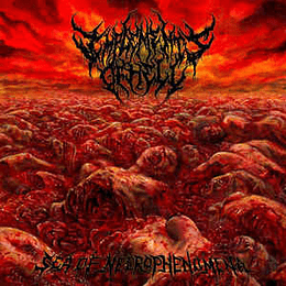 Implements Of Hell – Sea of Necrophenomena CD