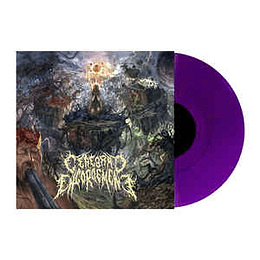 Cerebral Engorgement – Cerebral Chronicles LP