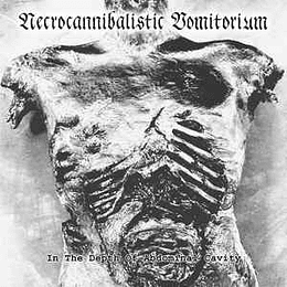 Necrocannibalistic Vomitorium / Decomposing Serenity – In The Depth Of Abdominal Cavity / Let Us Show You How To Draw Blood CD