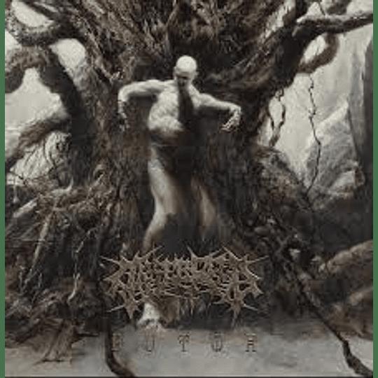 Arsebreed- Butoh LP