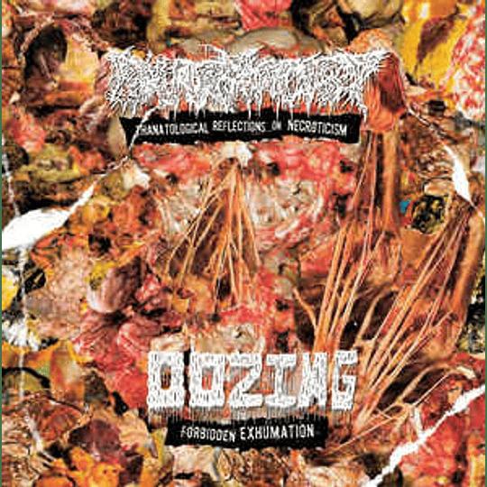 Oozing / Pharmacist  – Forbidden Exhumation / Thanatological Reflections On Necroticism MCD
