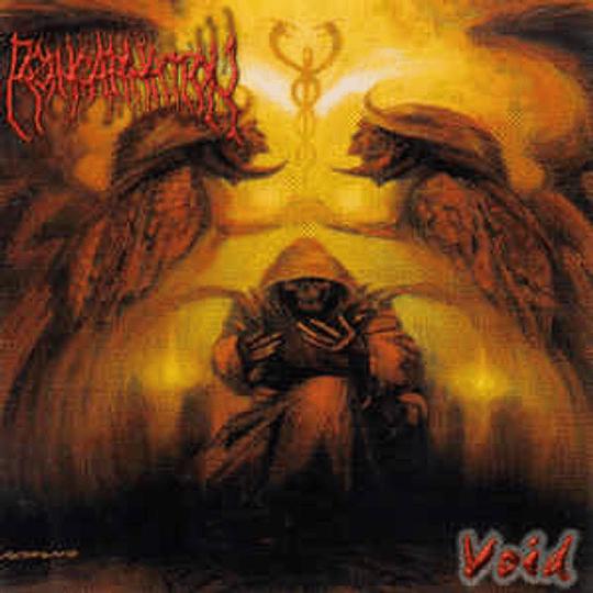 Reincarnation  – Void LP
