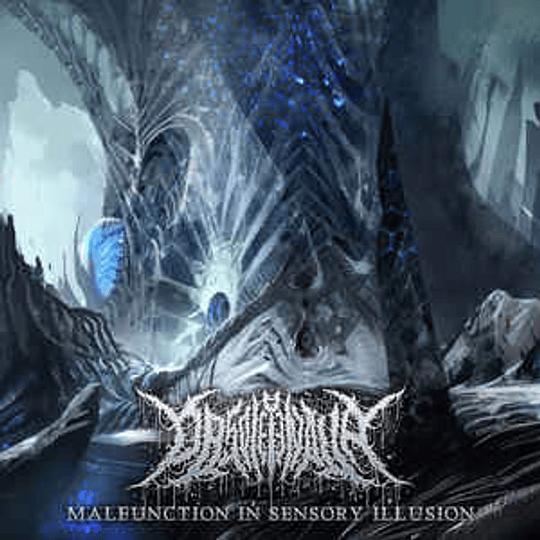 Obsoletenova – Malfunction In Sensory Illusion MCD
