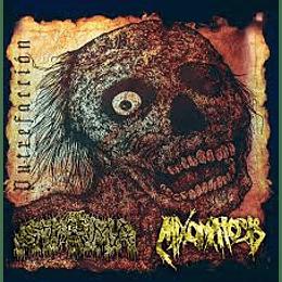 Mixomatosis/Stoma - Split CD