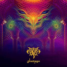 Asylum- Sharpen CD