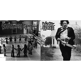 Meatal Ulcer / Decomposing Serenity – Split CD