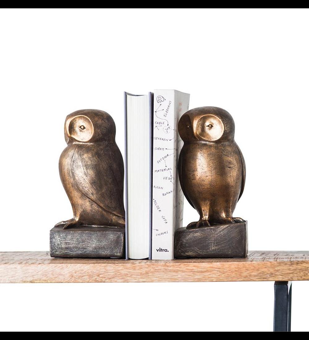 Sujeta libros búhos