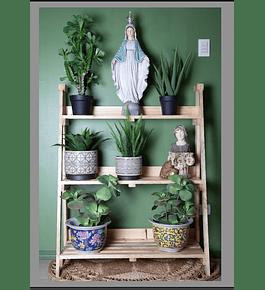 Repisa madera plantas