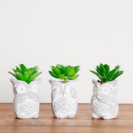 Set mini búhos sabios y cactus artificial
