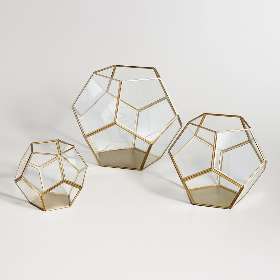 Terrarios vidrio
