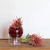 Florero de vidrio con base