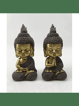 Set dos budas meditando