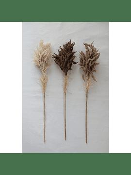 Set espigas trigo