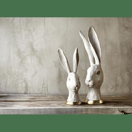 Cabezas conejo doradas
