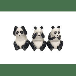 Pandas sabios