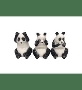 Set Pandas sabios