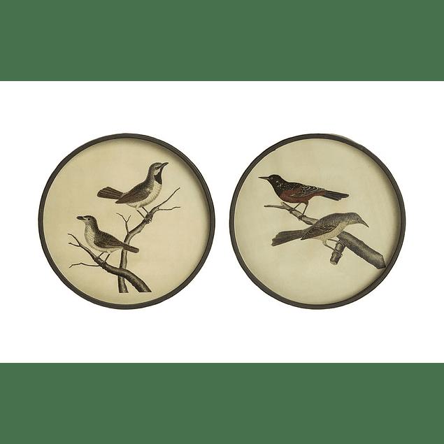 Cuadros pájaros