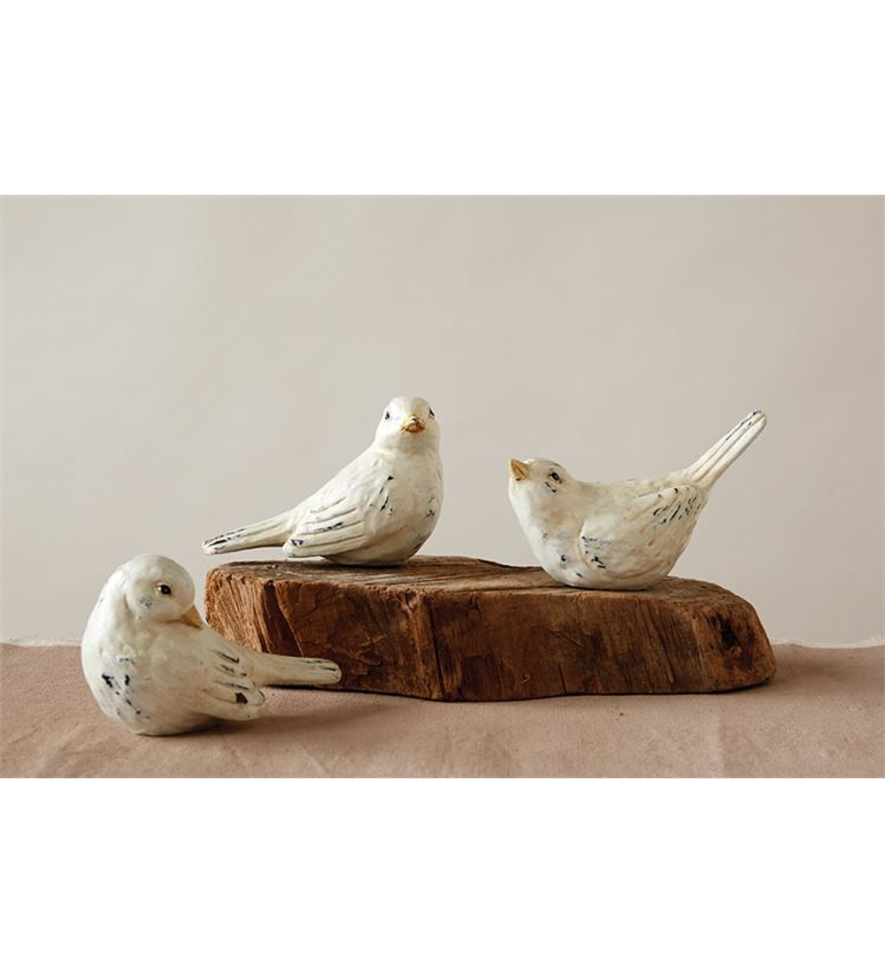 Set pájaros resina