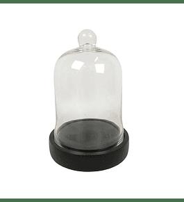 Cúpula vidrio