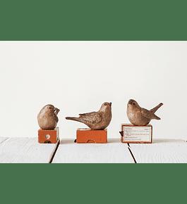 Pájaros resina