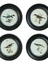 Cuadros pájaros circulares
