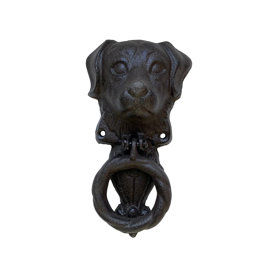 Toca puerta perro