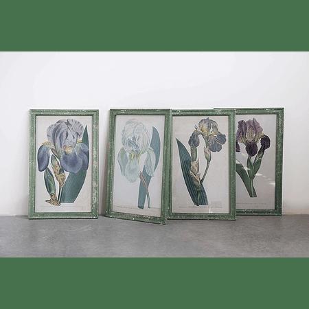 Cuadros orquídeas