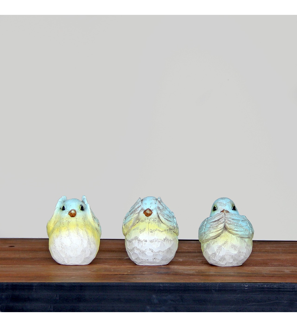 Set pájaros sabios