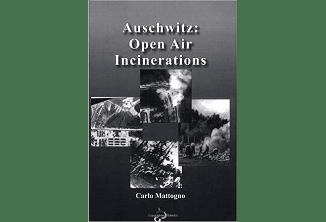 Aushwitz: Open Air Incinerations by Carlo Mattogno