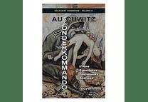 Sonderkommando Auschwitz I: Nine Eyewitness Testimonies Analyzed By Carlo Mattogno