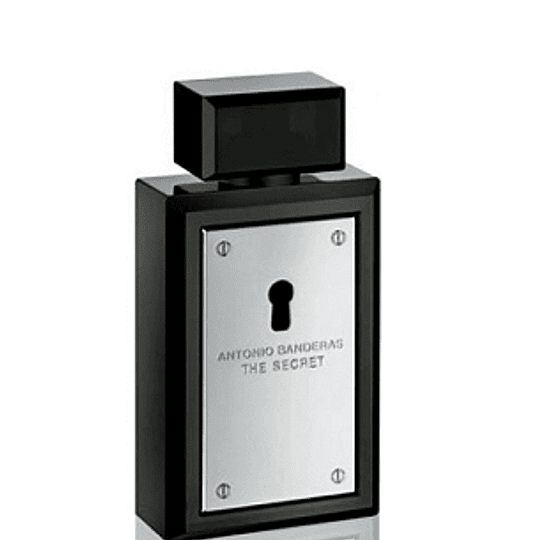 Perfume Secret Varon Edt 100 ml Tester