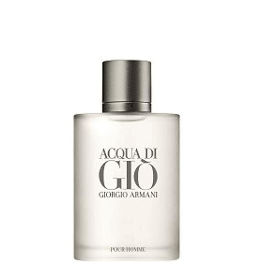 Perfume Acqua Di Gio Varon Edt 100 ml Tester