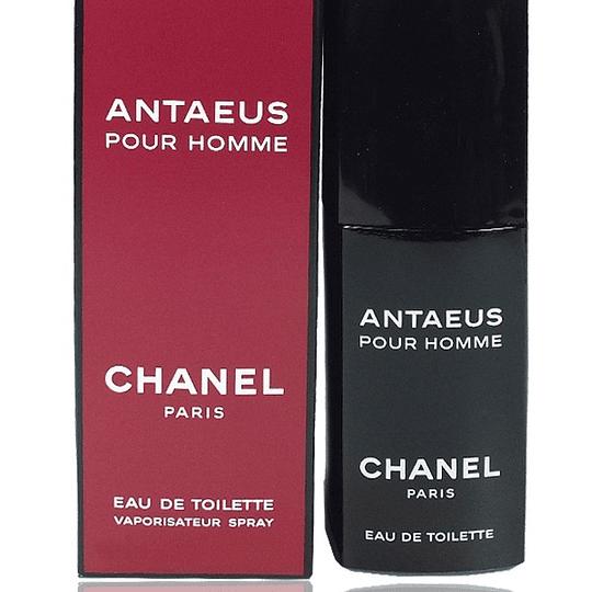 Antaeus para hombre / 100 ml Eau De Toilette Spray