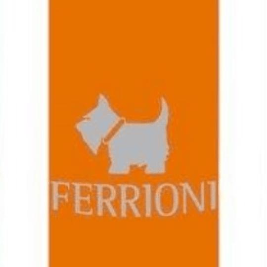 Terrier Orange para hombre / 250 ml Body Mist Spray
