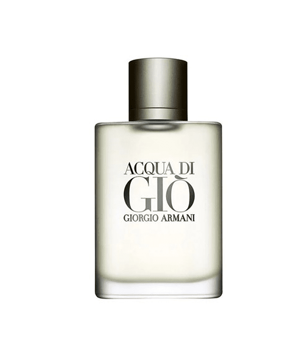 Giorgio Armani Acqua di Gio Homme EDT 100 ml