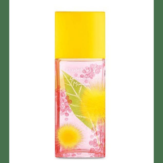Elizabeth Arden Green Tea Mimosa EDT 100 ML (M)