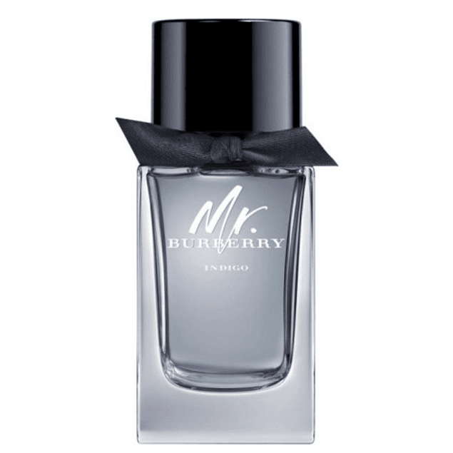 Burberry Mr. Burberry Indigo EDT 100 ML (H)
