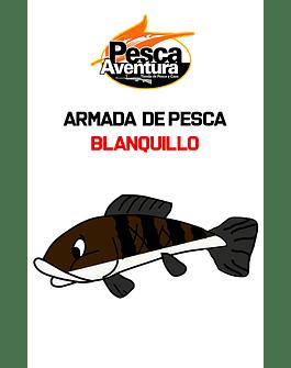 Armada Blanquillo N°16 Maruseigo