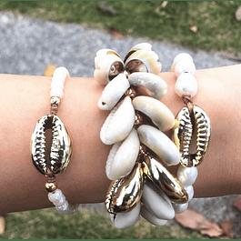Shore Shells