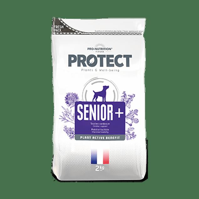 PROTECT SENIOR + CANINO SACO 12 KG