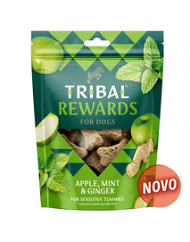 Tribal Rewards - Apple, Mint & Ginger - 130 Grs