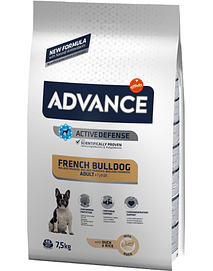 Advance Dog Adult French Bulldog