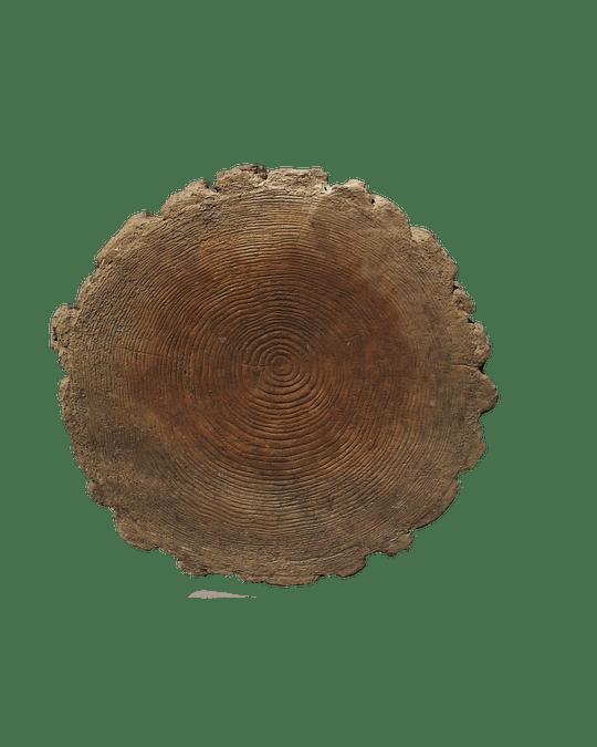 Pastelón Rodela 40 cm