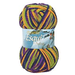 Esqui - 301