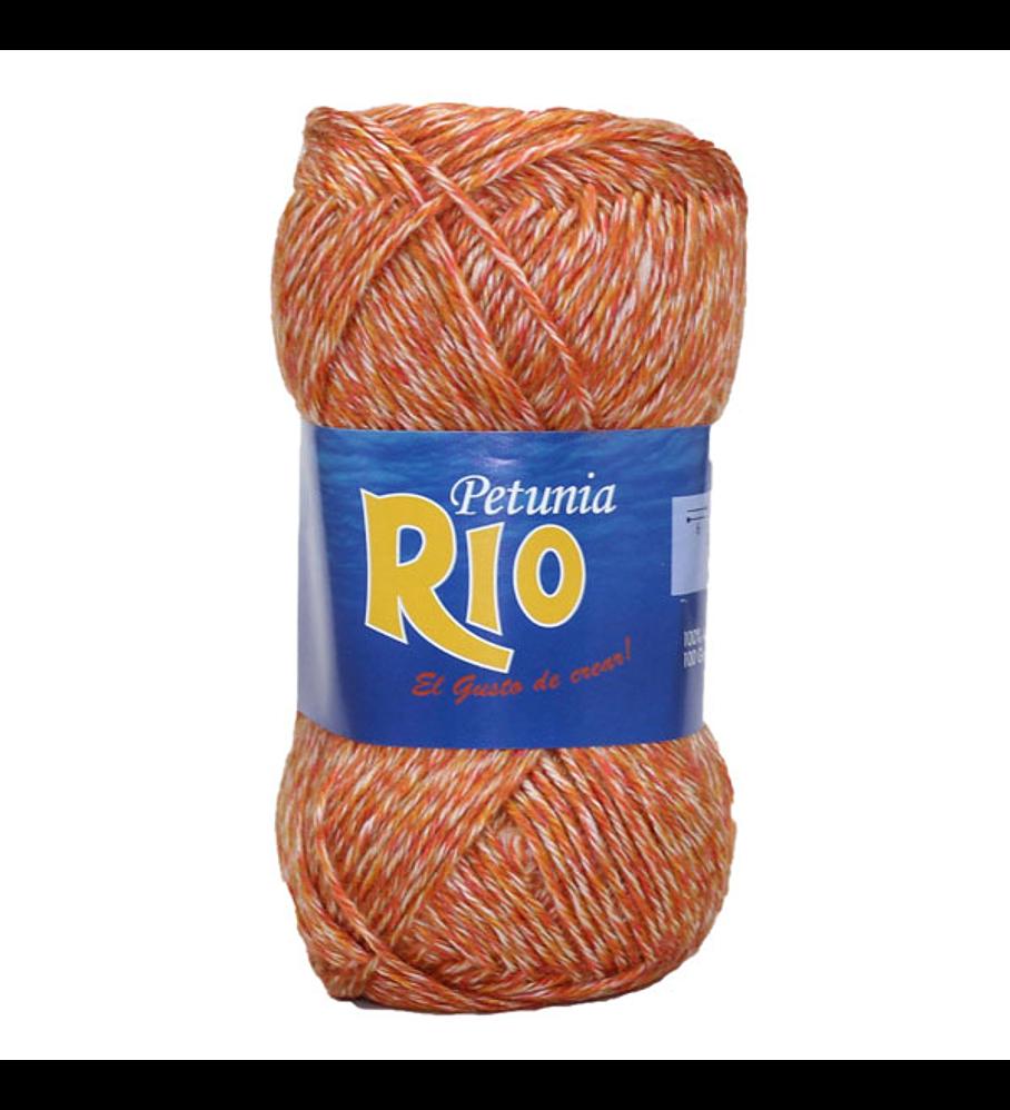 Rio - 106