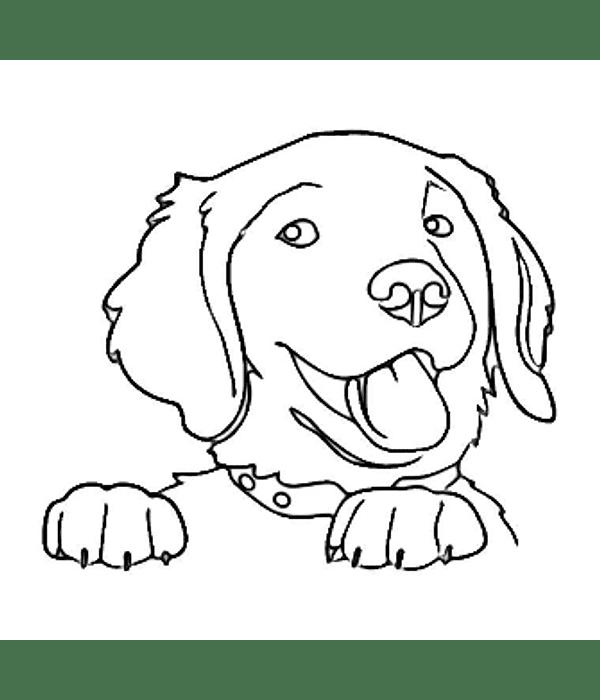 diseños de perritos para carcasas / personalizados / dibujos