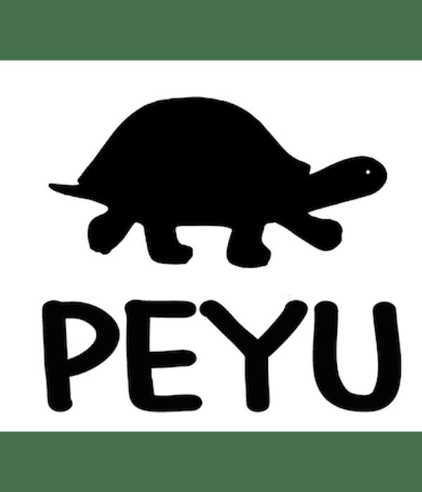 Products/ Instrucciones Oficiales Cachos PEYU