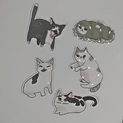 Set de Stickers Gato Memes Efecto 3D