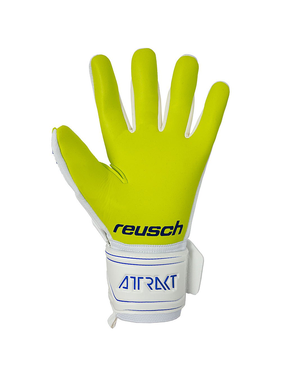 Reusch Attrakt Freegel G3